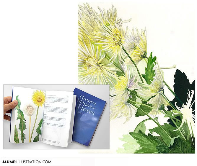 illustration books traditional media watercolor botanical